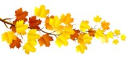 autumn-leaves-clipart-1-17-fall-clip-art